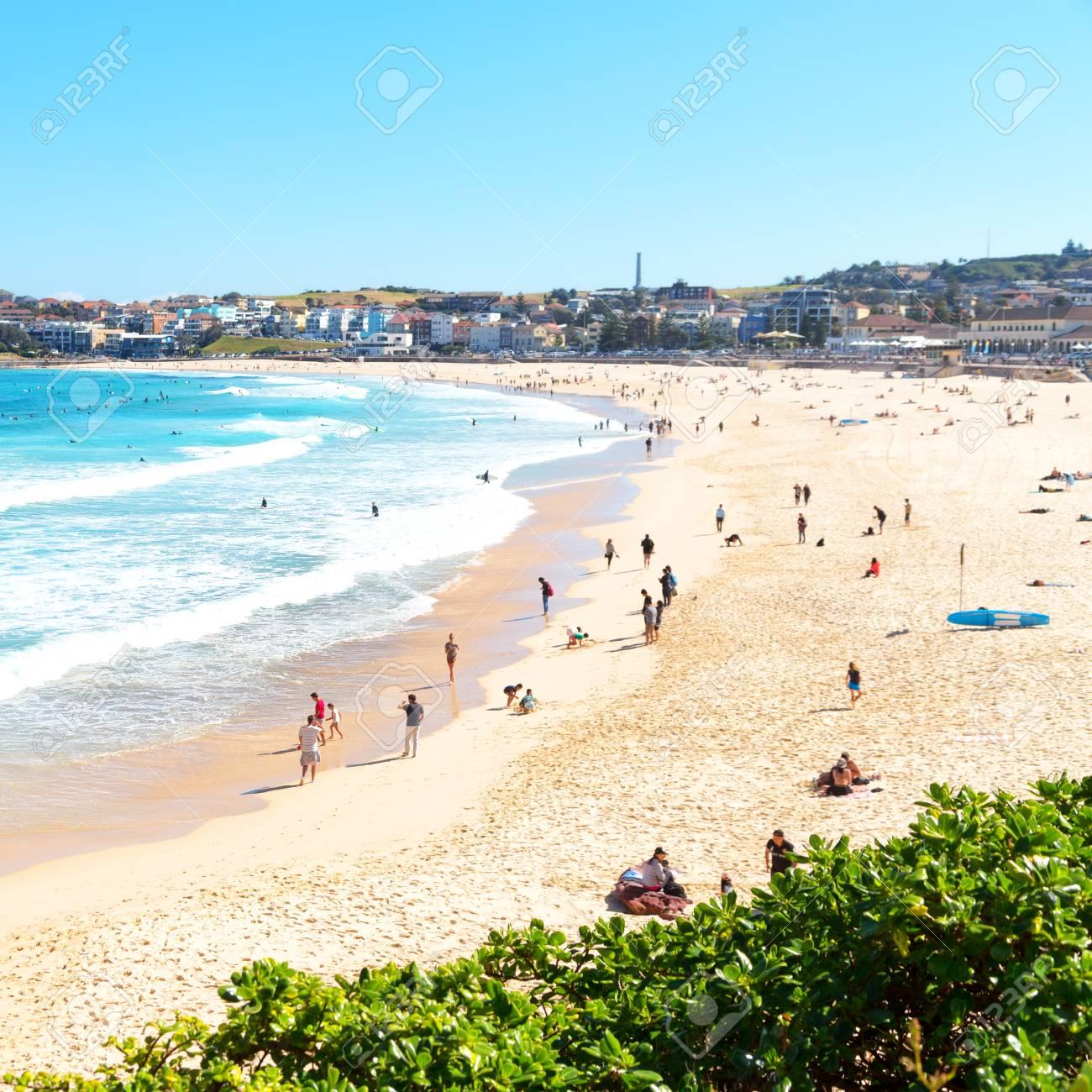 in australia people in bondie beach and the resort near ocean - 96783295