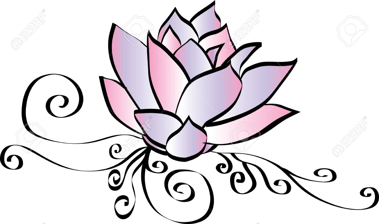 Elegant Pink Lotus Flower Drawing Royalty Free Cliparts Vectors And Stock Illustration Image 93685928