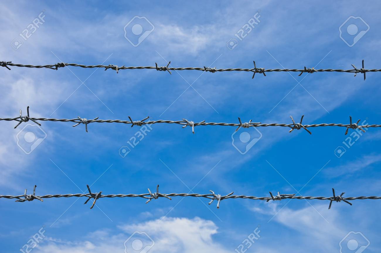 Barbed wires against blue sky. Stock Photo - 9026933