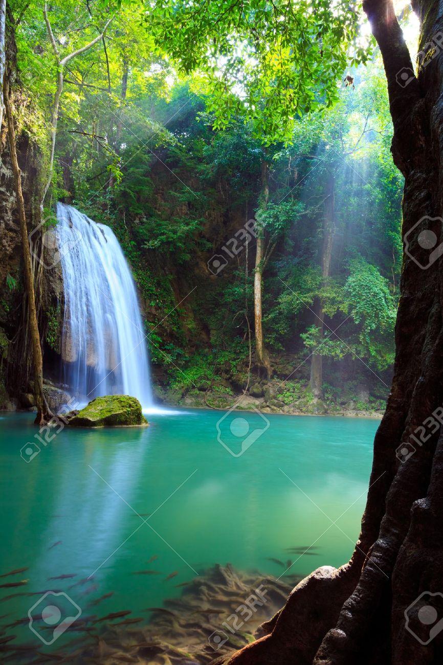 Erawan Waterfall, Kanchanaburi, Thailand Stock Photo - 10996219
