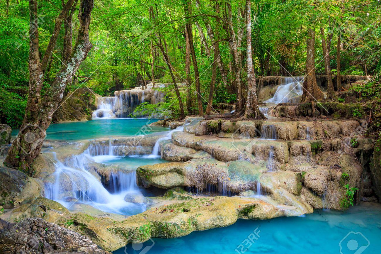 """Résultat de recherche d'images pour """"paradise heaven forest"""""""