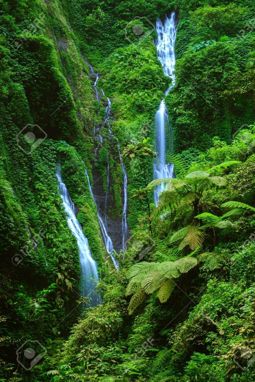 Madakaripura  Waterfall, East Java, Indonesia Stock Photo - 19493285