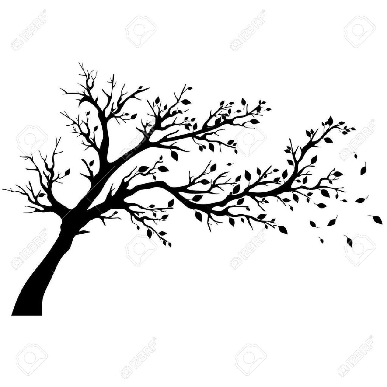 Tree silhouettes - 16761905