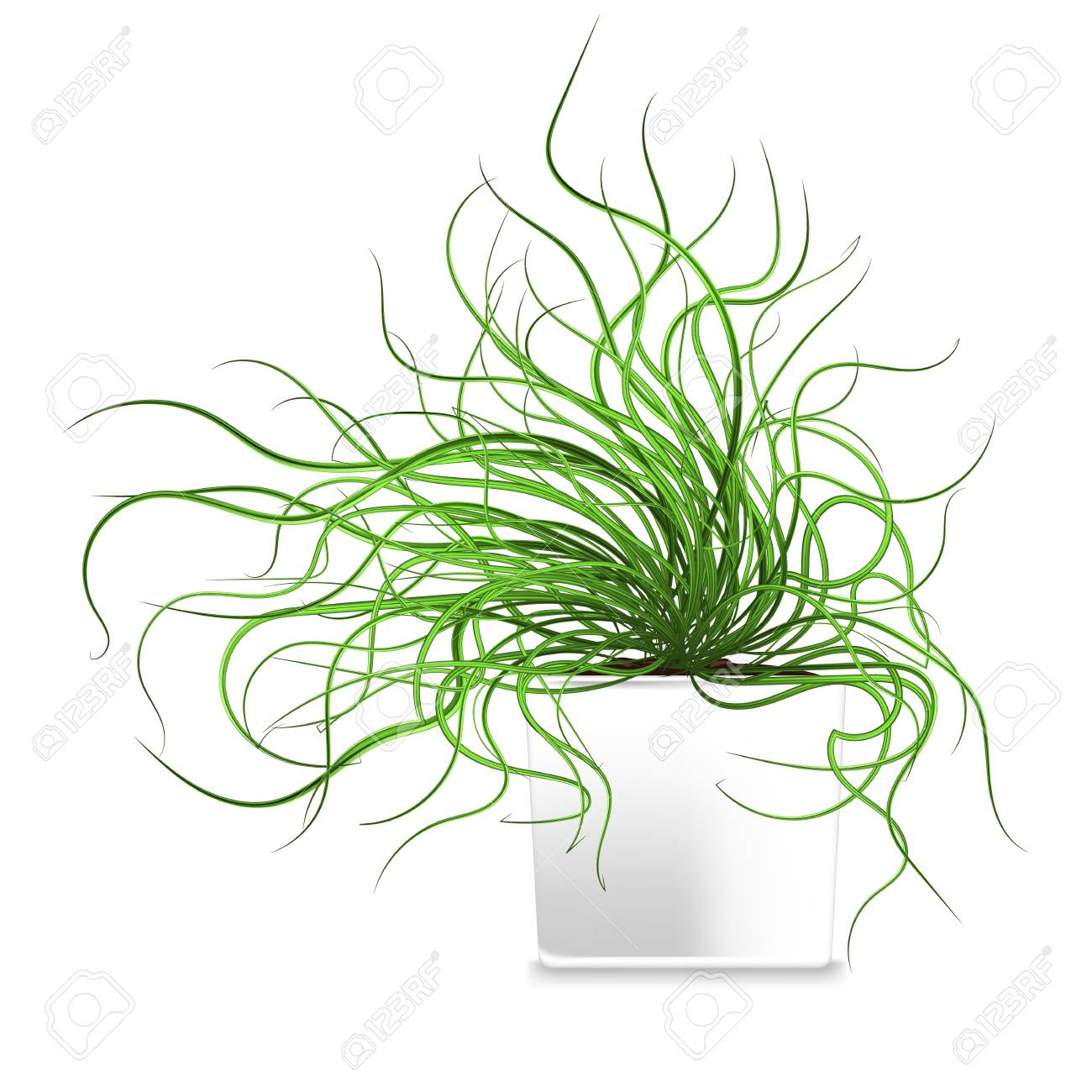 Spotted Plant In A White Pot Element Of Home Decor Vector