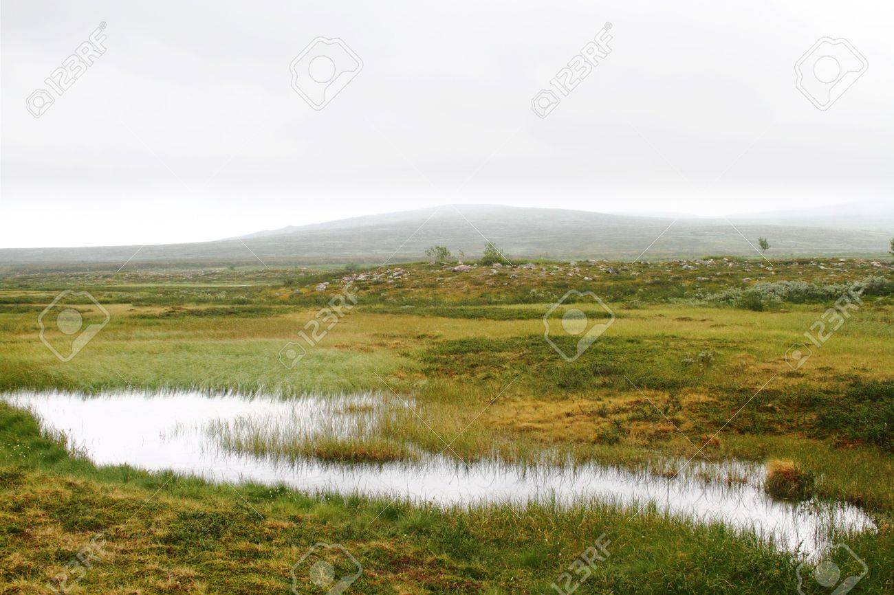 Landscape with green grass and marsh, a waterhole and misty hills in the back Stock Photo - 8111632