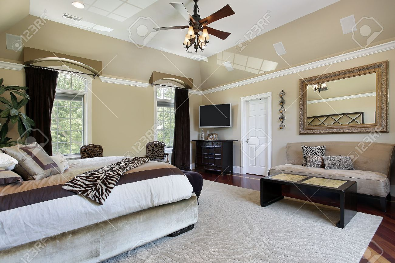 master bedroom in luxury home with tray ceiling stock photo 8792958