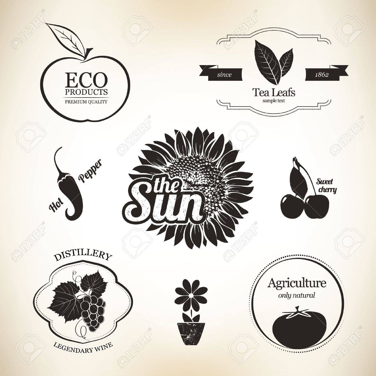 Agriculture, wine and food design elements Stock Vector - 15657257