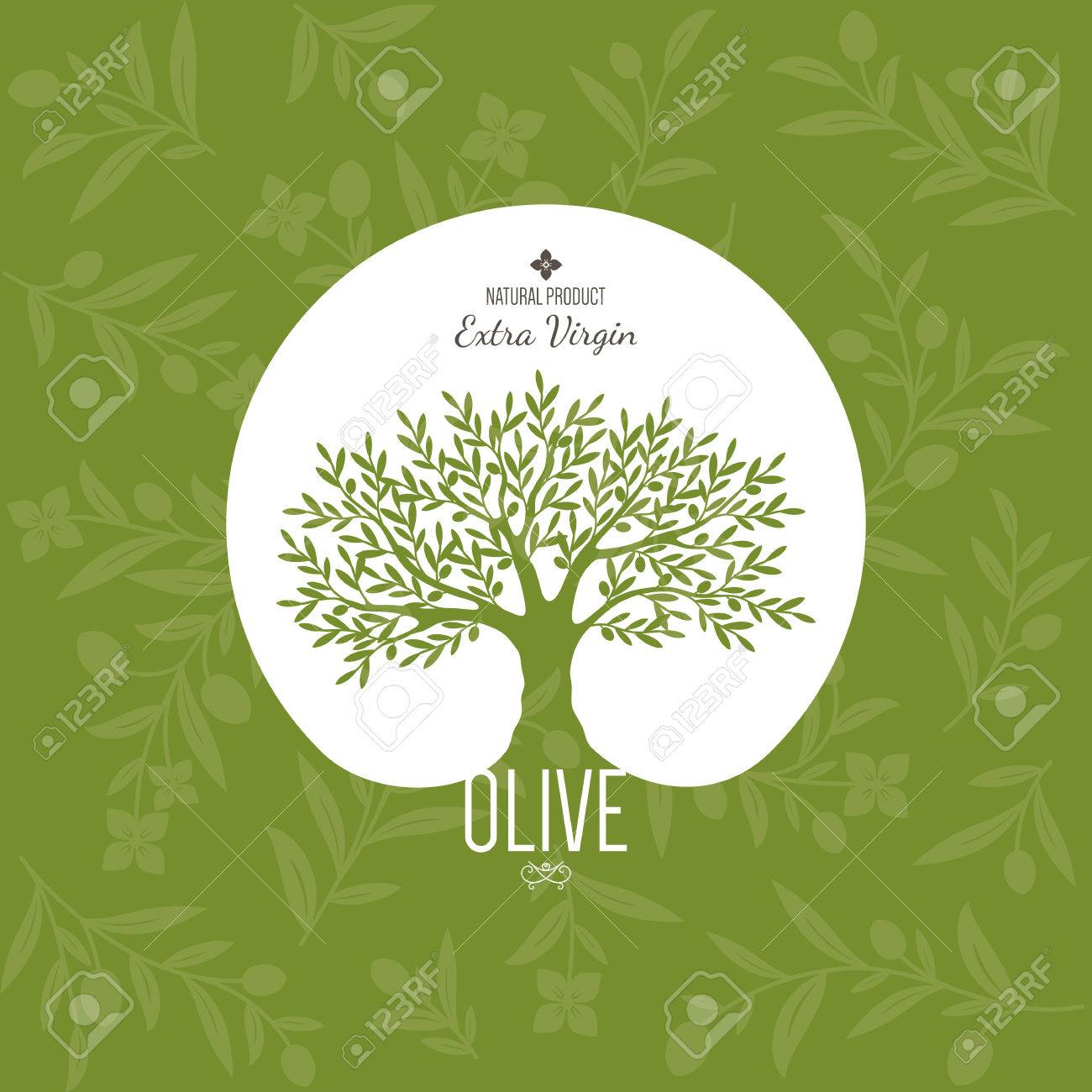 Olive label, logo design. Olive tree - 35168182