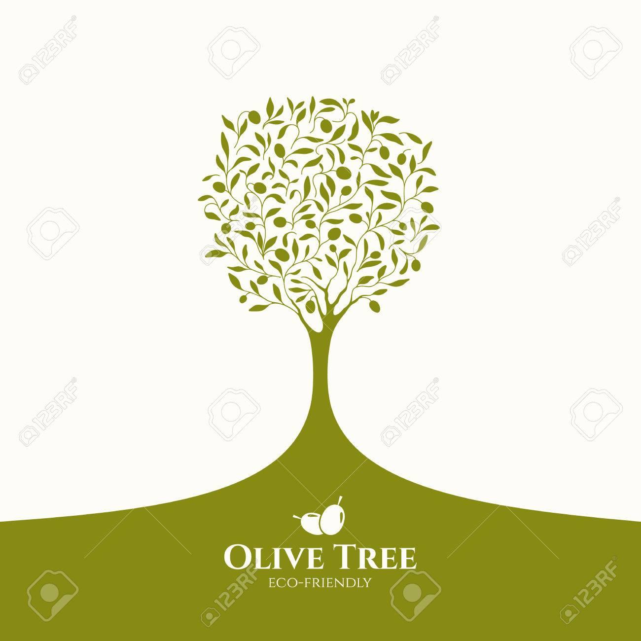 Olive label, logo design. Olive tree - 64320620