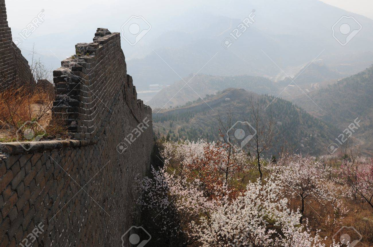 Peach blossom full of incense the Great Wall Stock Photo - 13045614