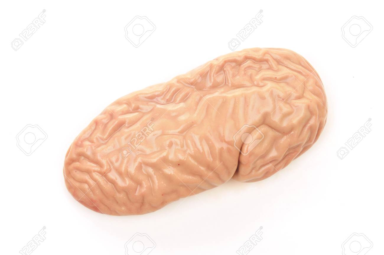 Pig Kidney On A White Background Stock Photo Picture And Royalty