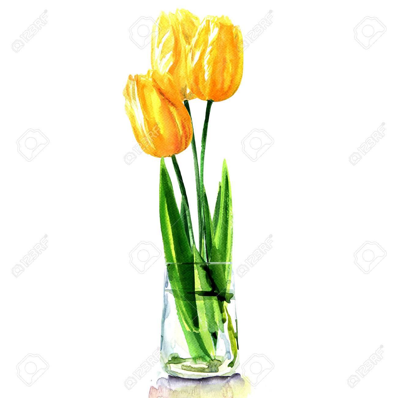 Gelbe Tulpen In Durchsichtige Vase Isoliert Aquarell Illustration