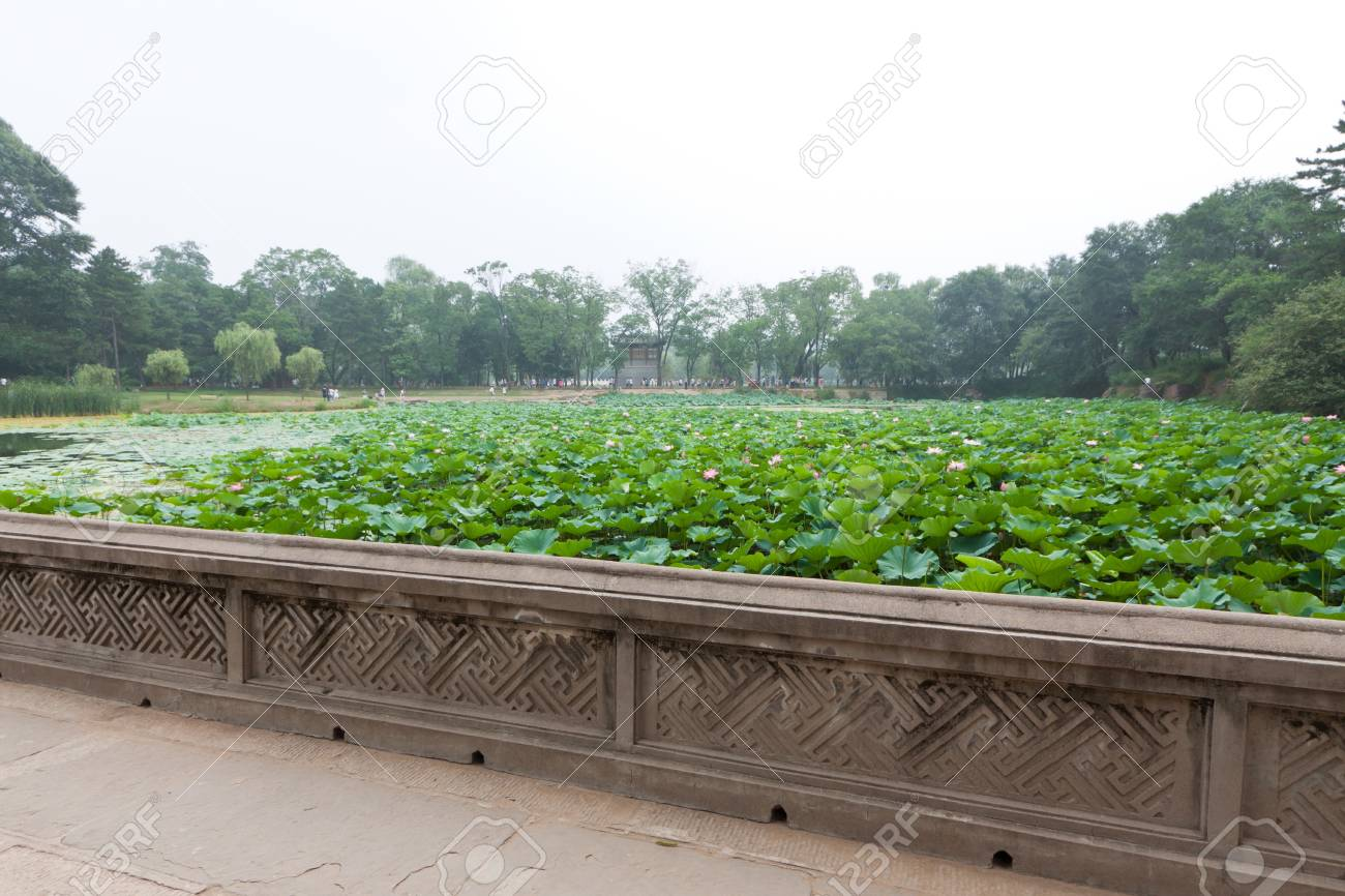 lotus pond in ancient chinese garden north china stock photo 19560176 - North China Garden