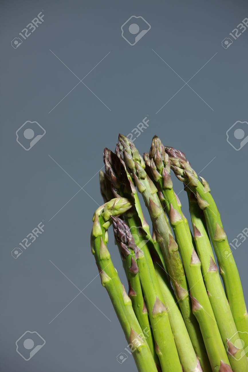 Bunch of fresh green asparagus spears to be used as an ingredient in cooking isolated on grey Stock Photo - 14273340
