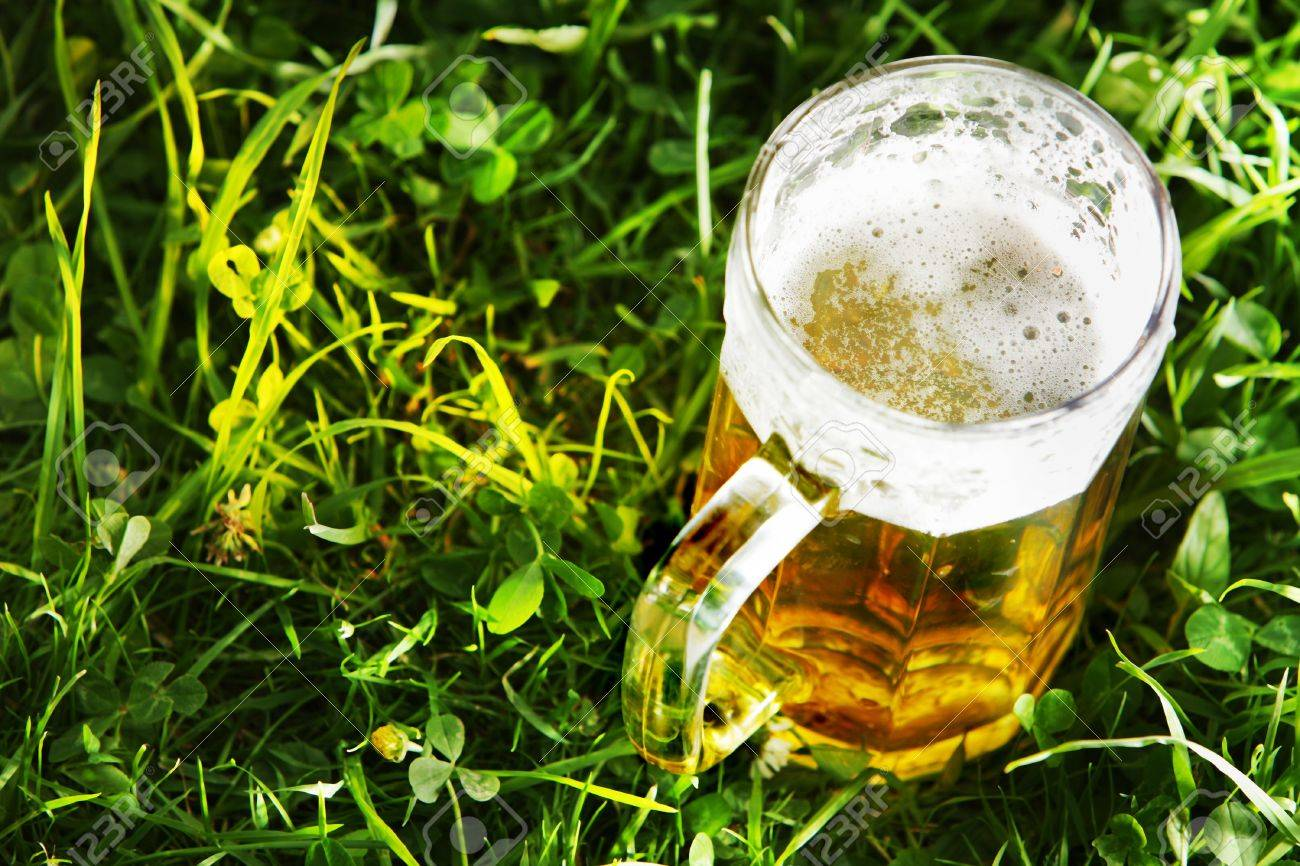 Mug of beer in green grass with copy space Stock Photo - 14273342