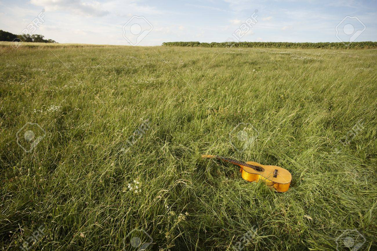 Acoustic wooden guitar lying by itself in a grassy field in a country music concept Stock Photo - 14383552