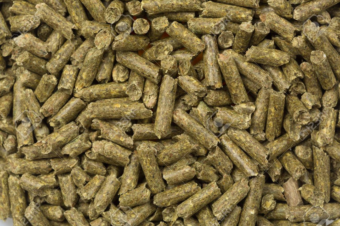 food pellets for hamster rabbits guanea pig or mouse stock photo