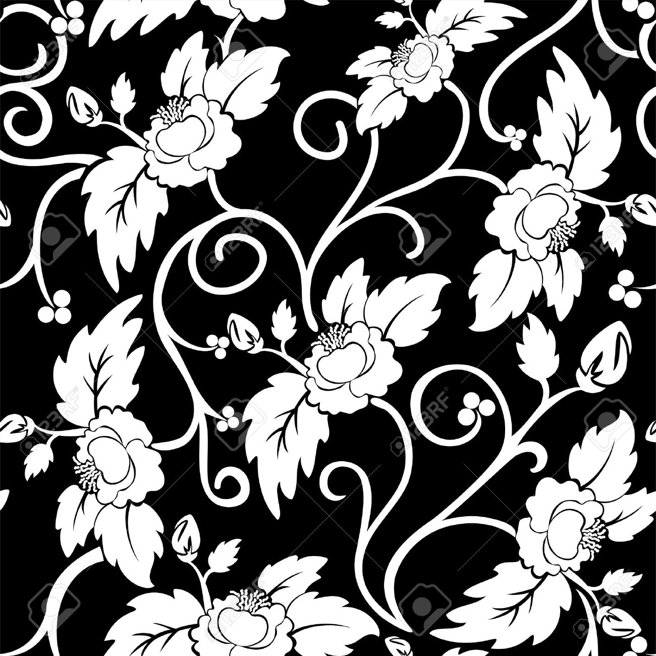 black seamless background with curly white flowers Stock Vector - 12105724