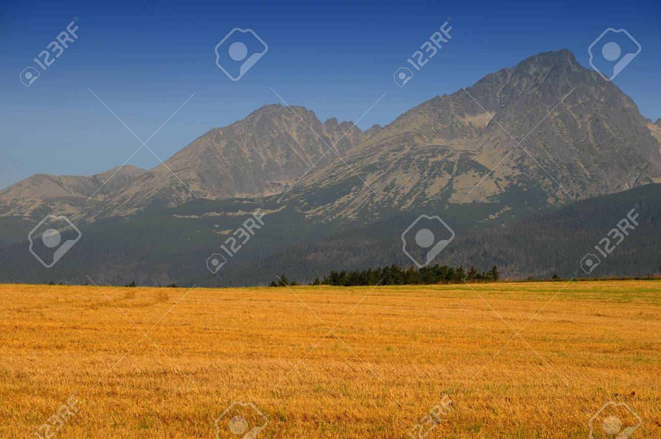Corn field in september - after harverst Stock Photo - 3621213