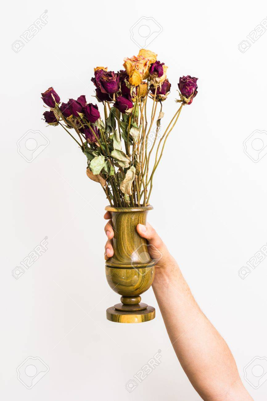 Hand Holding Vase Of Dead Roses Stock Photo Picture And Royalty