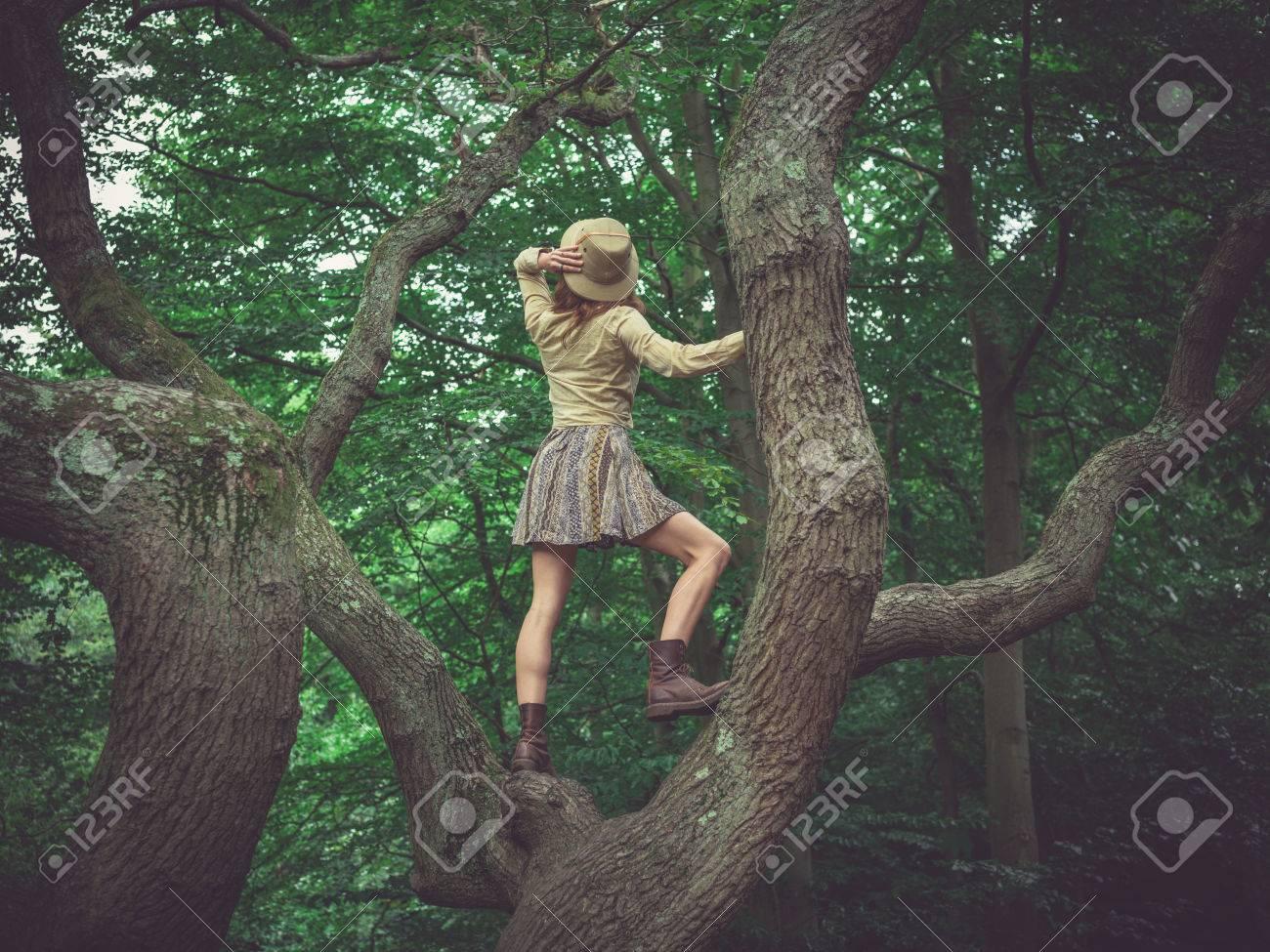 2b2f7f19f Una mujer joven está subiendo un árbol en el bosque