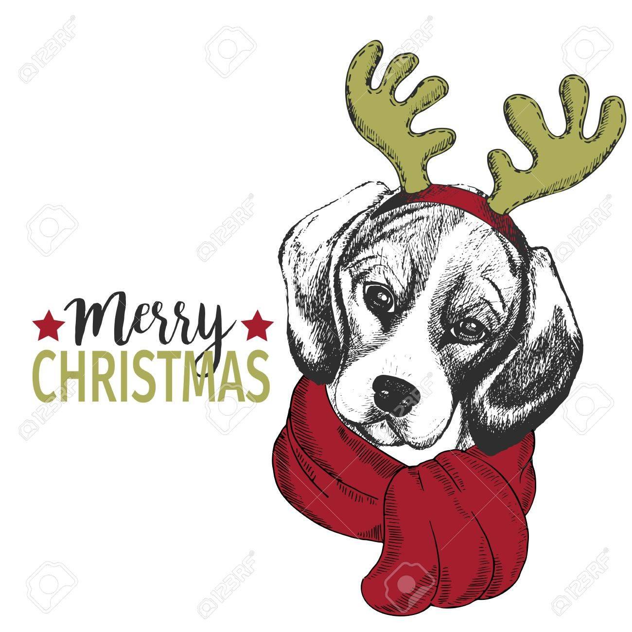Vector Portrait Von Weihnachtshund. Beagle Hund Mit Hirschhornrand ...