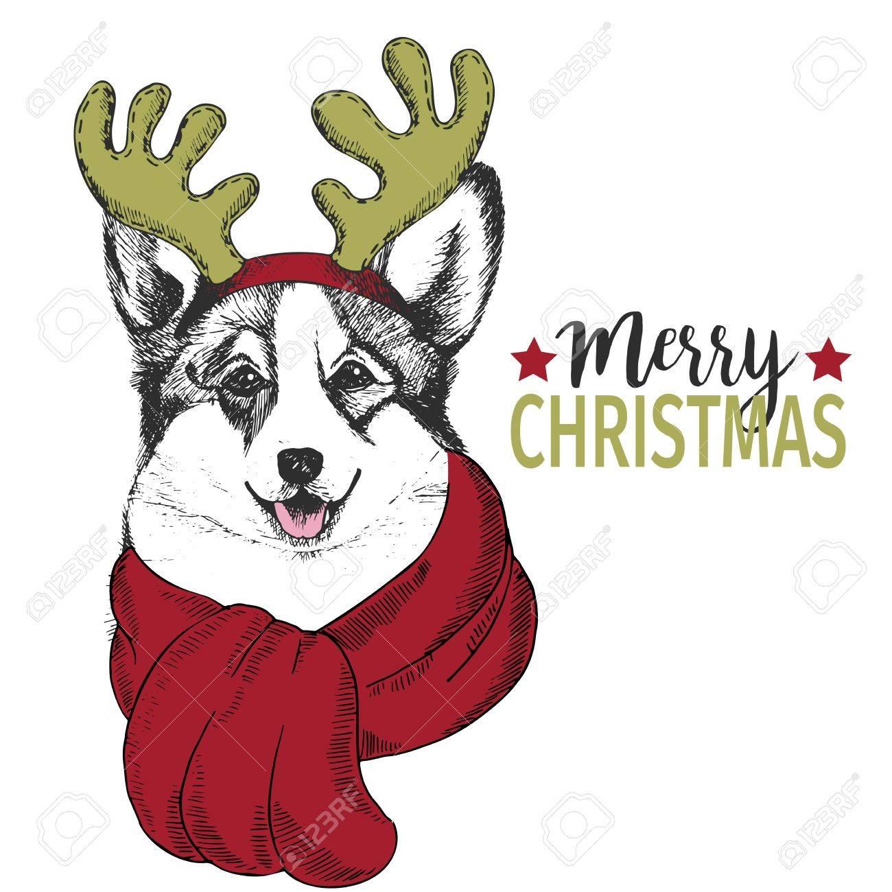 Vector portrait of christmas dog welsh corgi dog wearing deer vector portrait of christmas dog welsh corgi dog wearing deer horn rim and scarf kristyandbryce Image collections