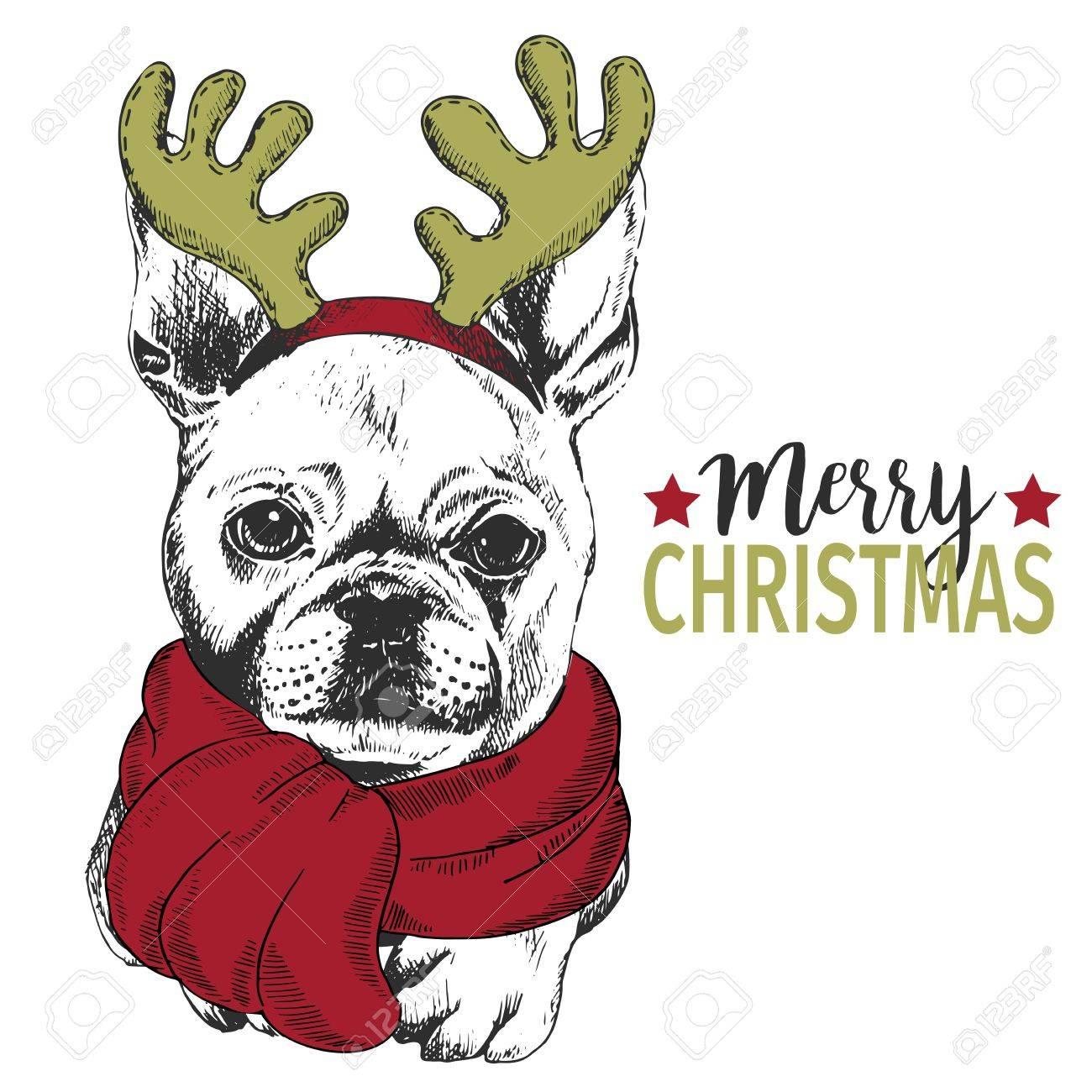Vector Portrait Von Weihnachtshund. Französisch Bulldog Hund Mit ...