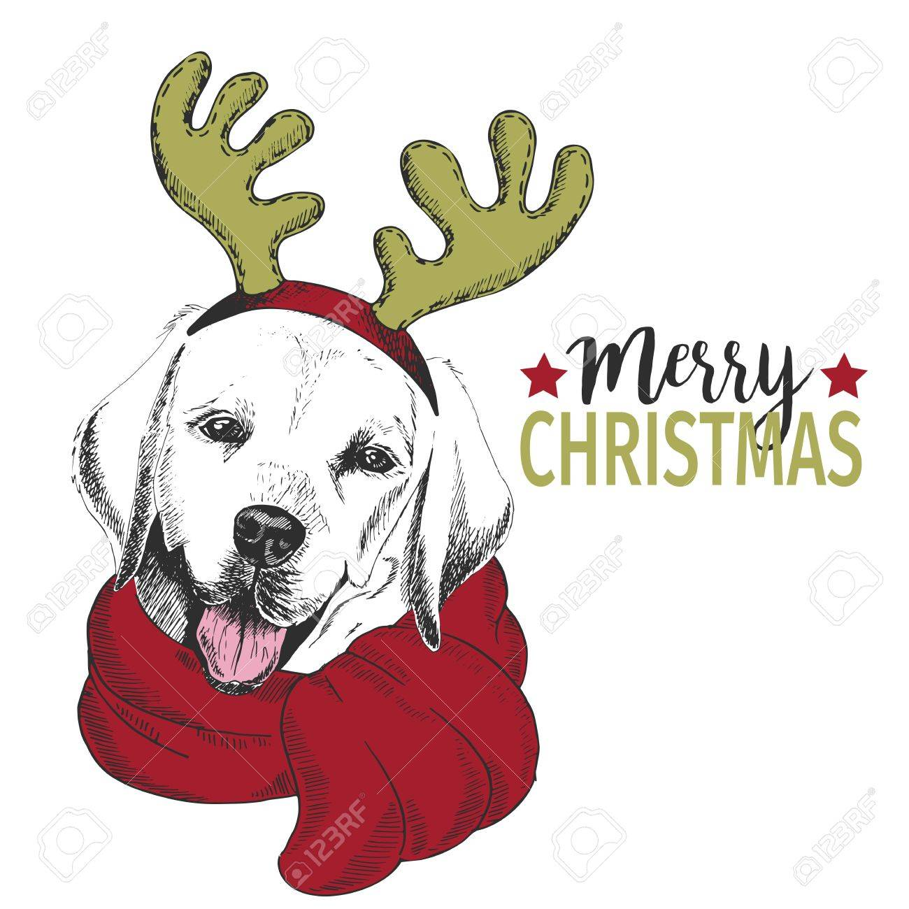Vector Portrait Of Christmas Dog. Labrador Retriever Dog Wearing ...