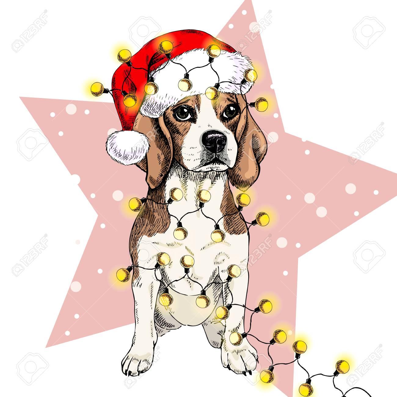 Christmas Beagle Clipart.Vector Portrait Of Beagle Dog Wearing Santa Hat Christmas Lights