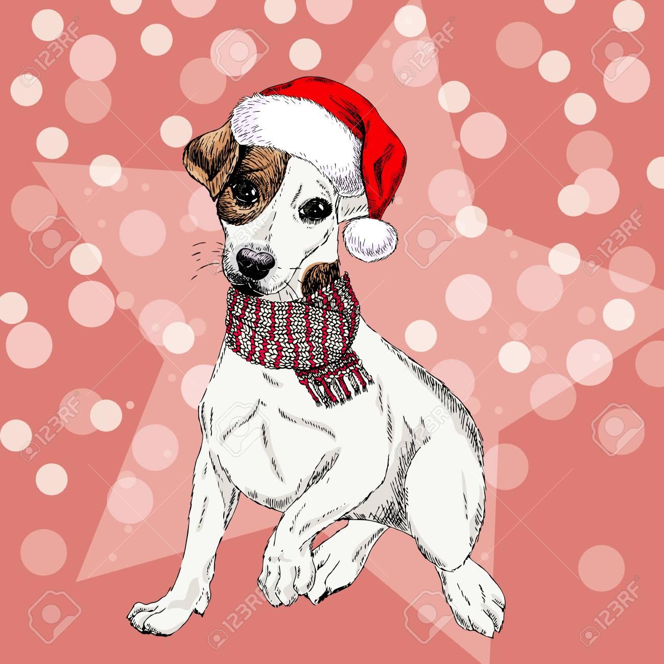 Vector Porträt Von Jack Russel Terrier-Hund, Der Sankt-Hut Und ...
