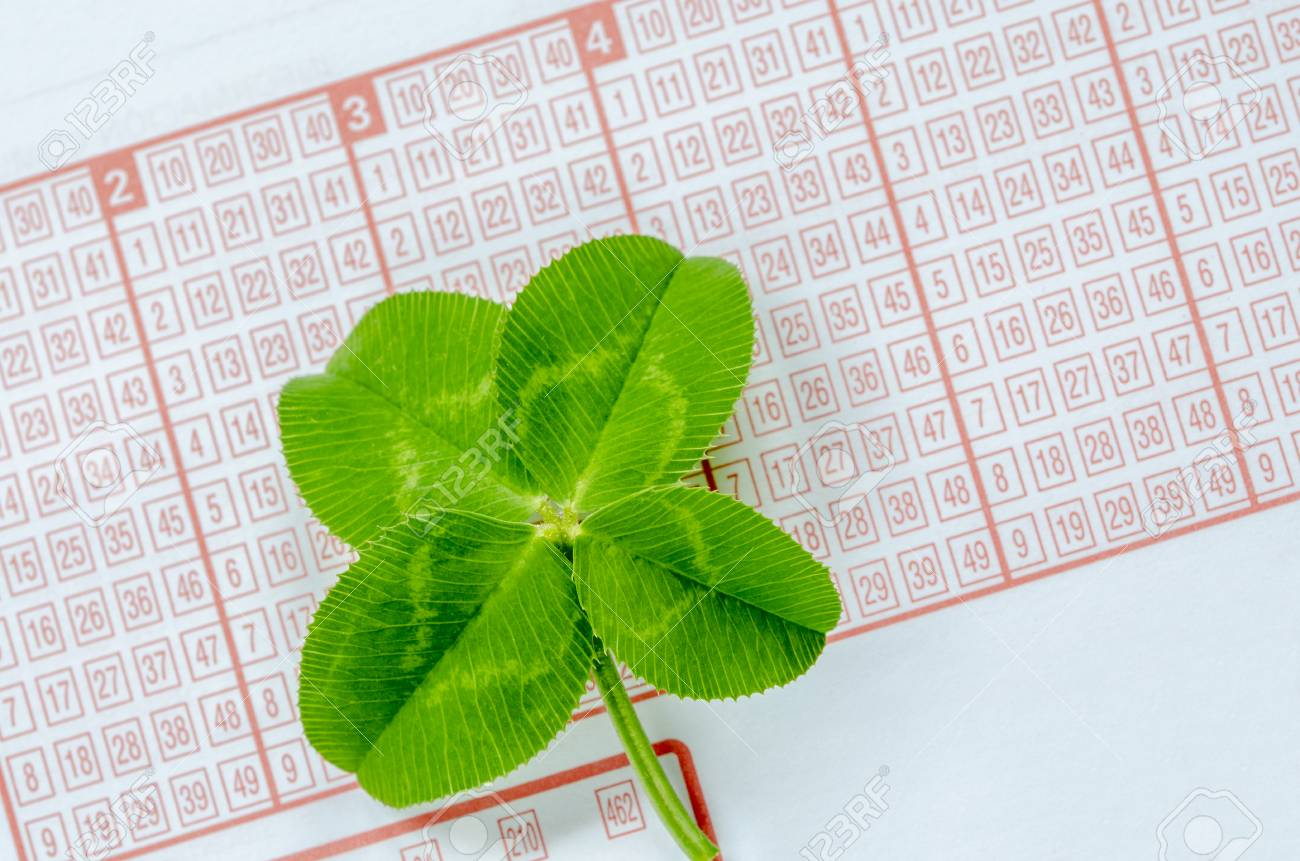 Four Leaf Clover A Symbol Of Good Luck On Lottery Ticket Stock Photo