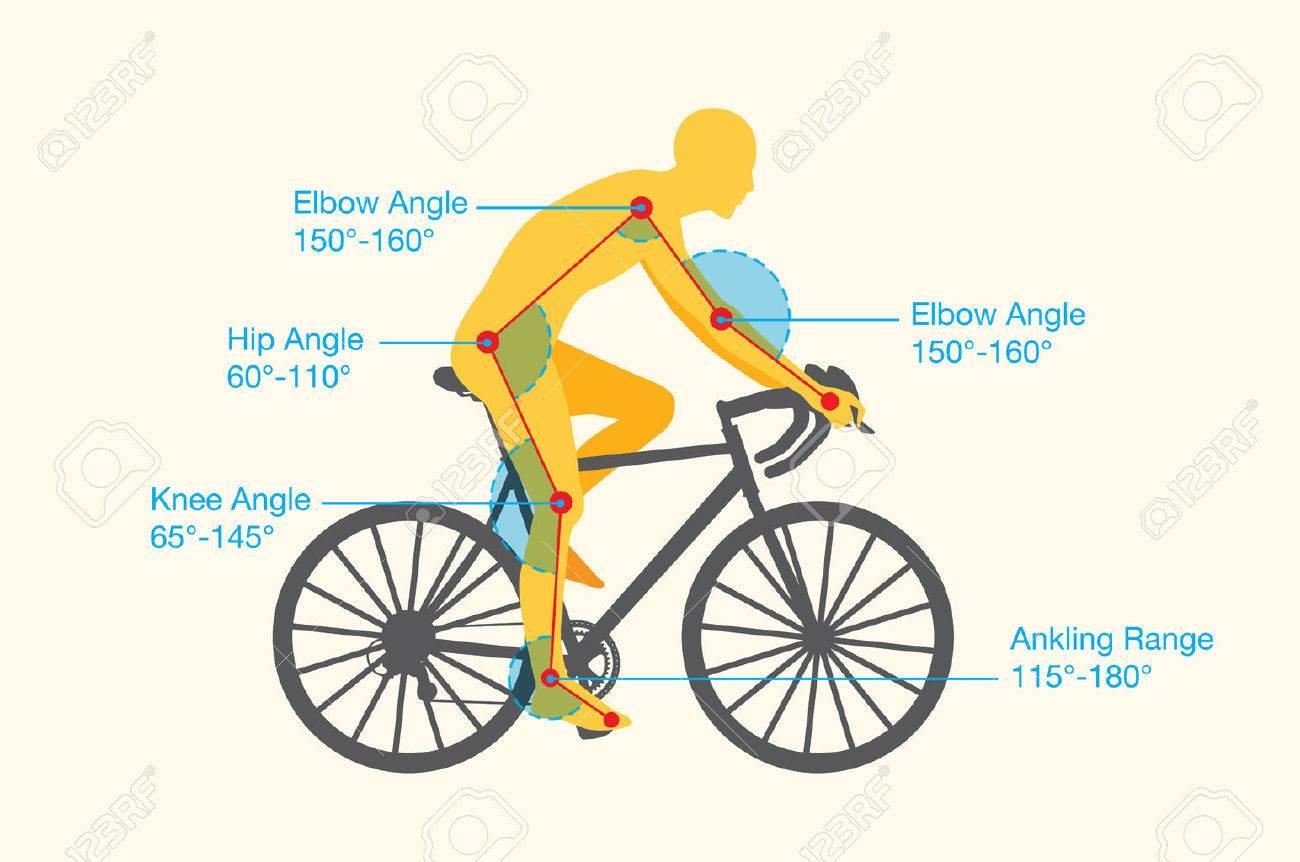 Perfecto Anatomía De Una Impresión De La Bicicleta Ideas - Anatomía ...