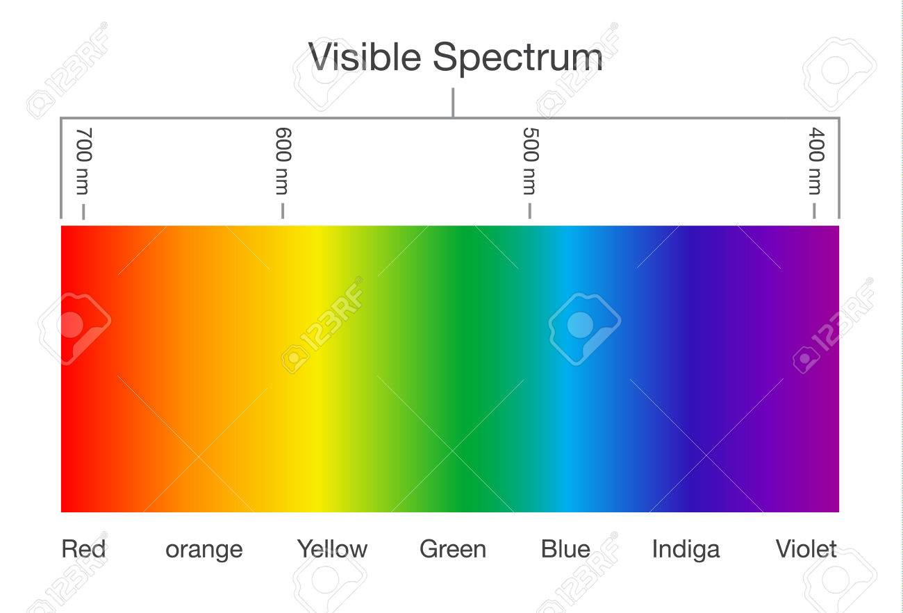 Chart of visible spectrum color illustration about human vision chart of visible spectrum color illustration about human vision and light stock vector nvjuhfo Images