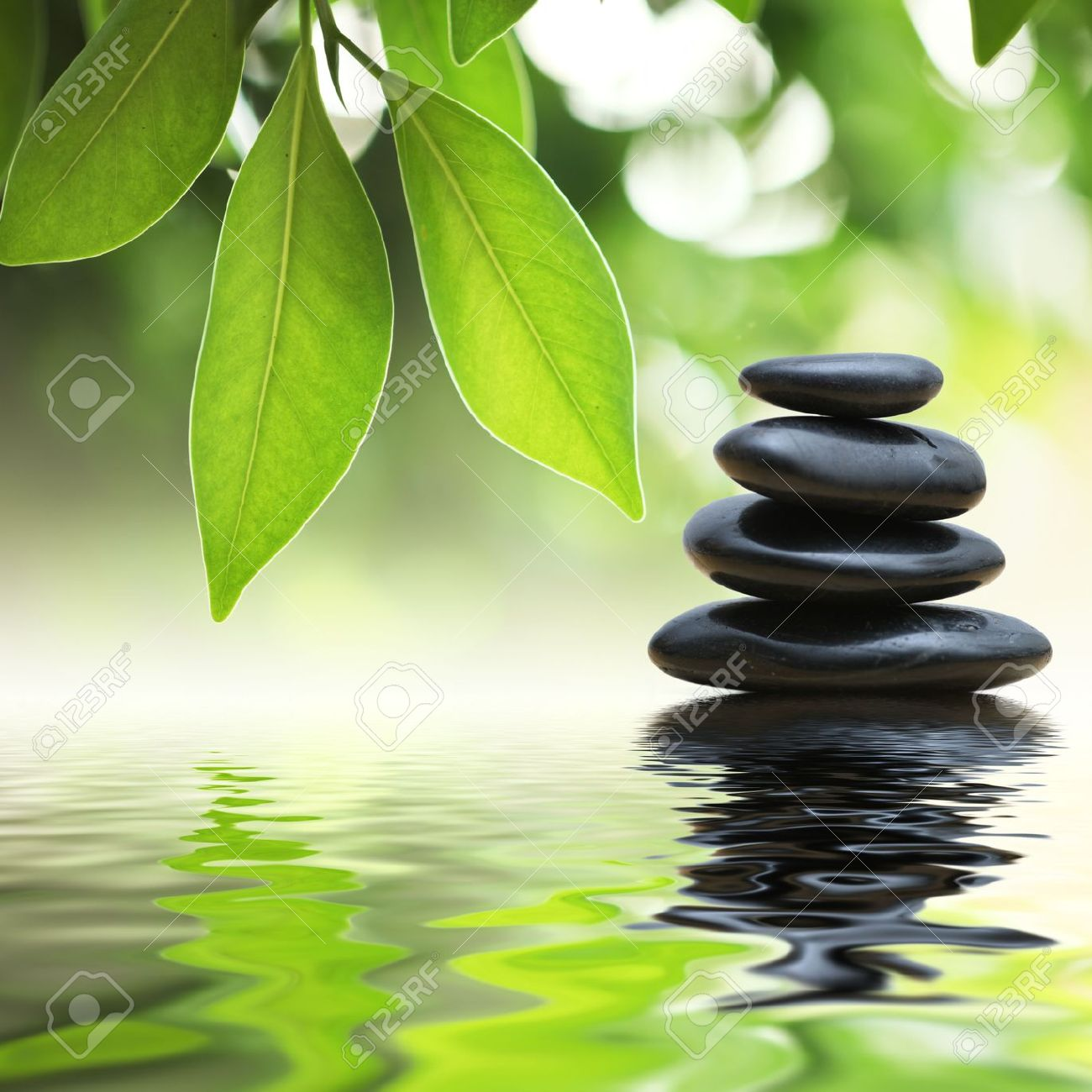 Grean leaves over zen stones pyramid on water surface Stock Photo - 5948718