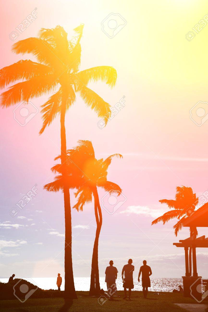 Surfers silhouettes walking under palm trees at beautiful tropical beach in Hawaii Stock Photo - 8860684