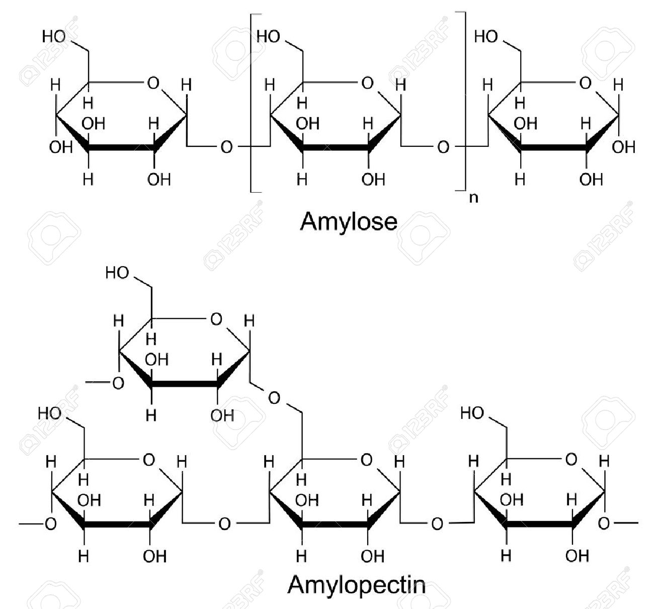 Structural components of the starch amylose, pectin 2D Illustration of chemical formulas, isolated on white - 27539073