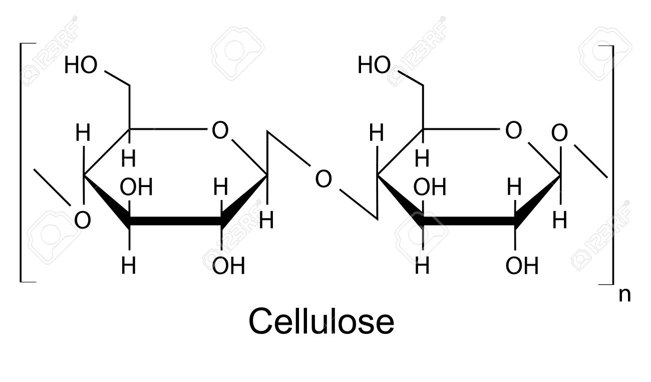 The structural chemical formula of the cellulose polymer 2d the structural chemical formula of the cellulose polymer 2d illustration vector isolated on pooptronica