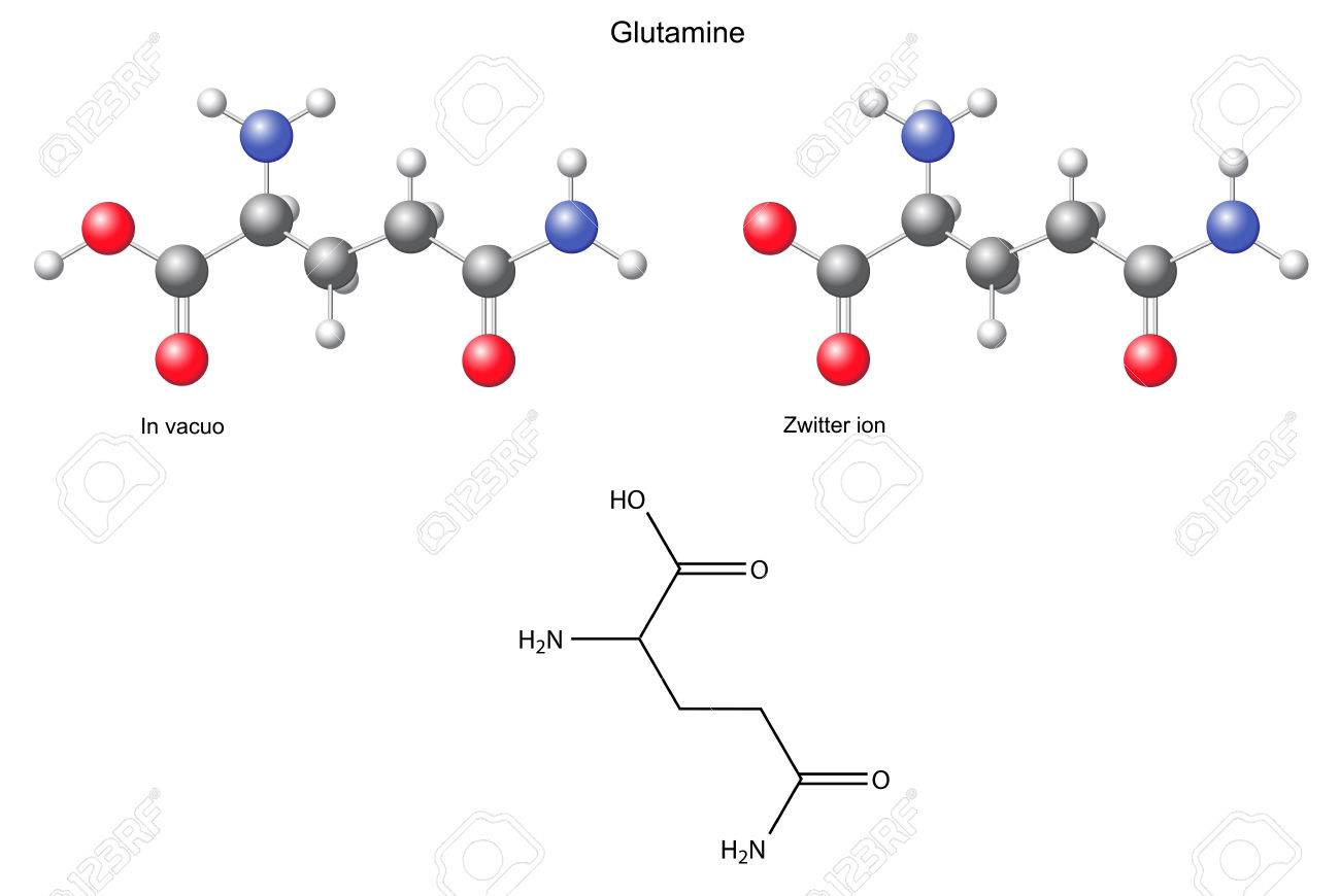 aminozuur glutamine