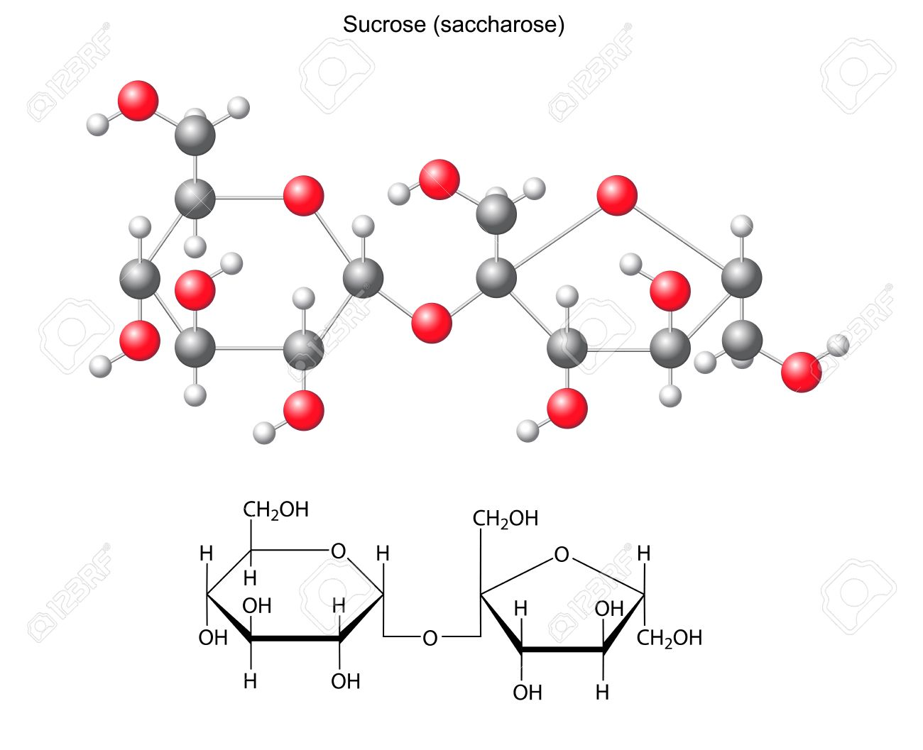 Structural chemical formula and model of sucrose saccharose - 29306148