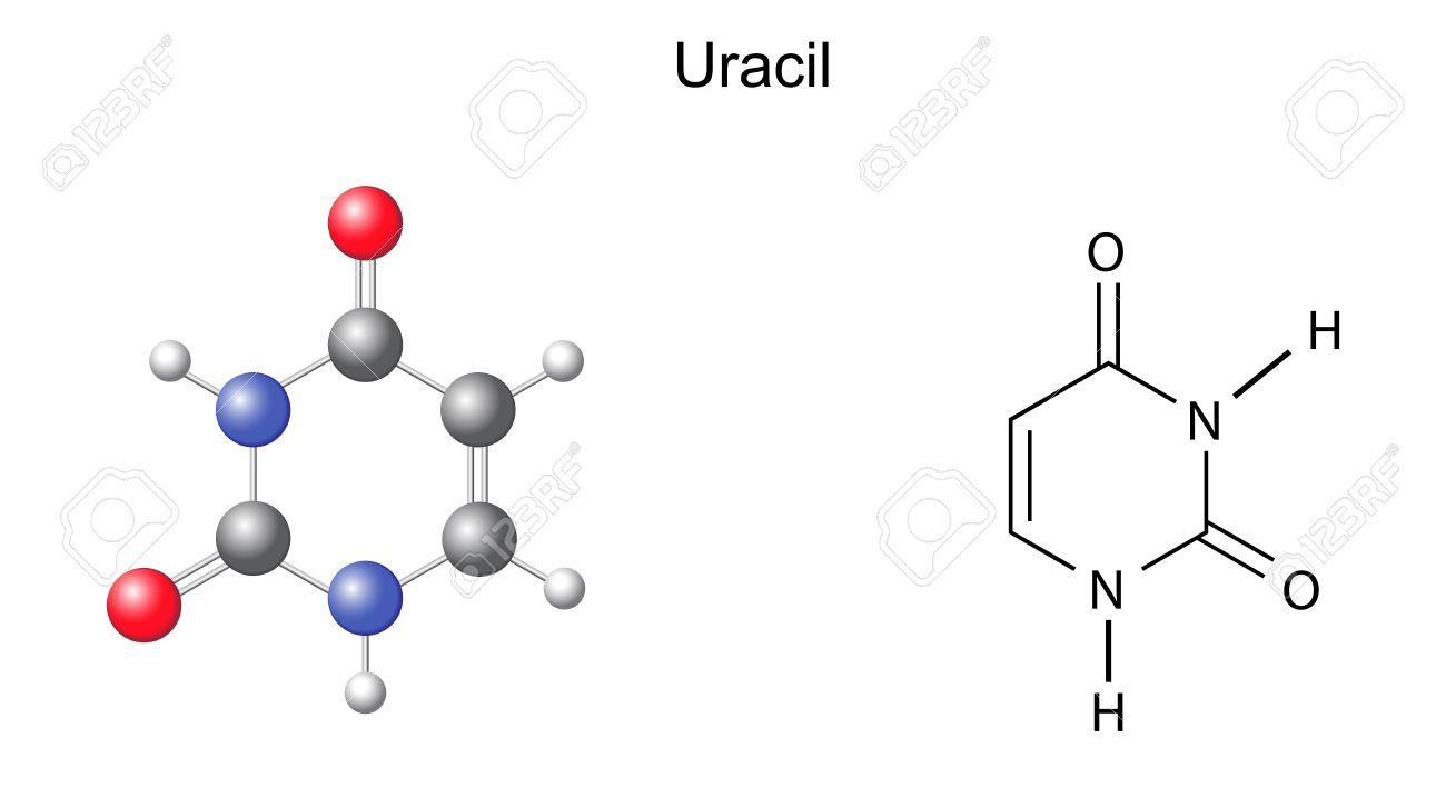 化学構造式とウラシル RNA 窒素...