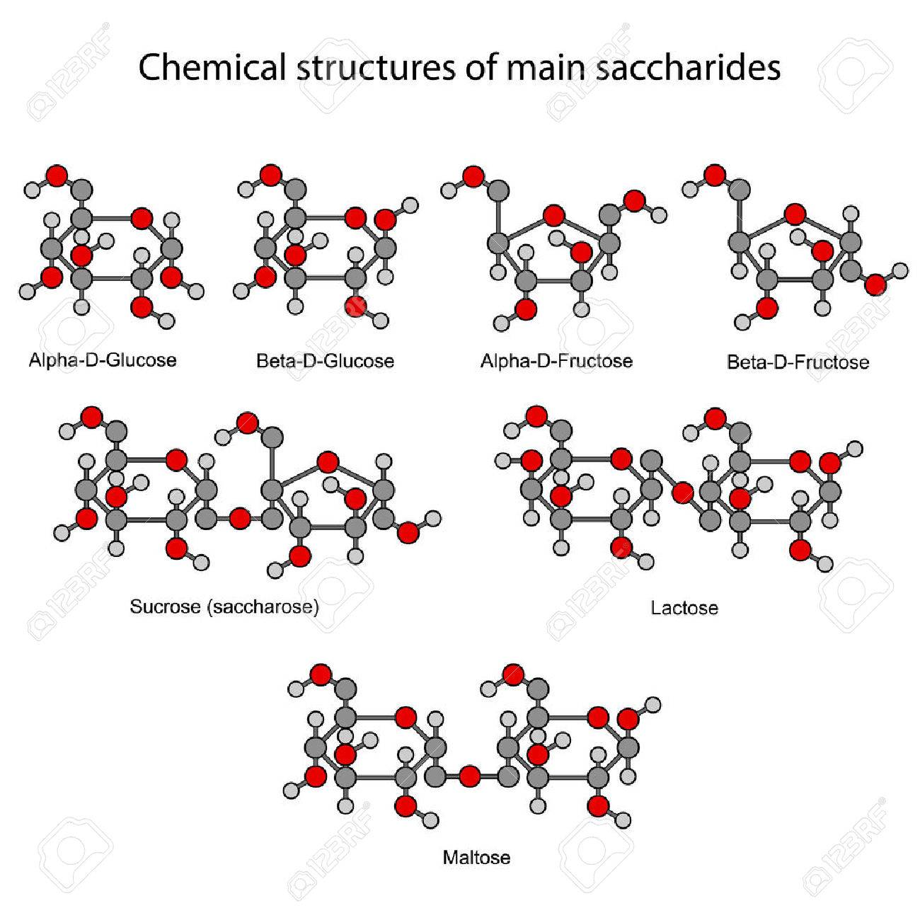 Chemical formulas of main sugars mono and disaccharides royalty chemical formulas of main sugars mono and disaccharides stock vector 31597569 biocorpaavc Images
