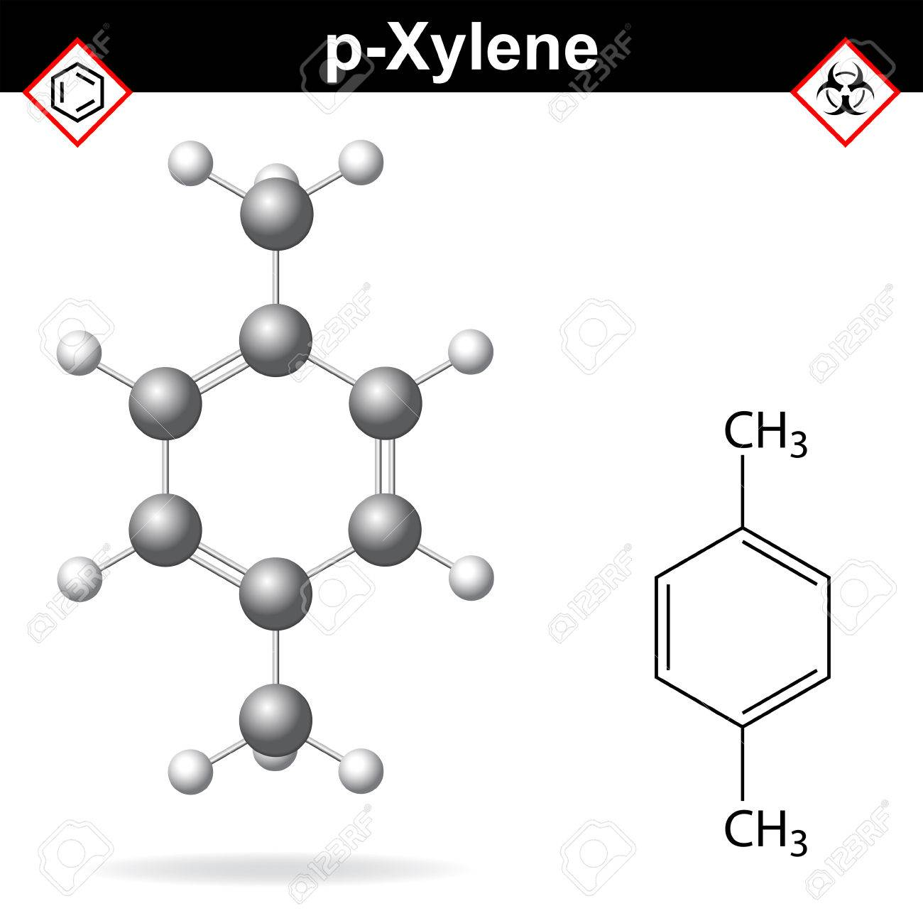 Xylene molecule - structural chemical formula and model of para-xylene,