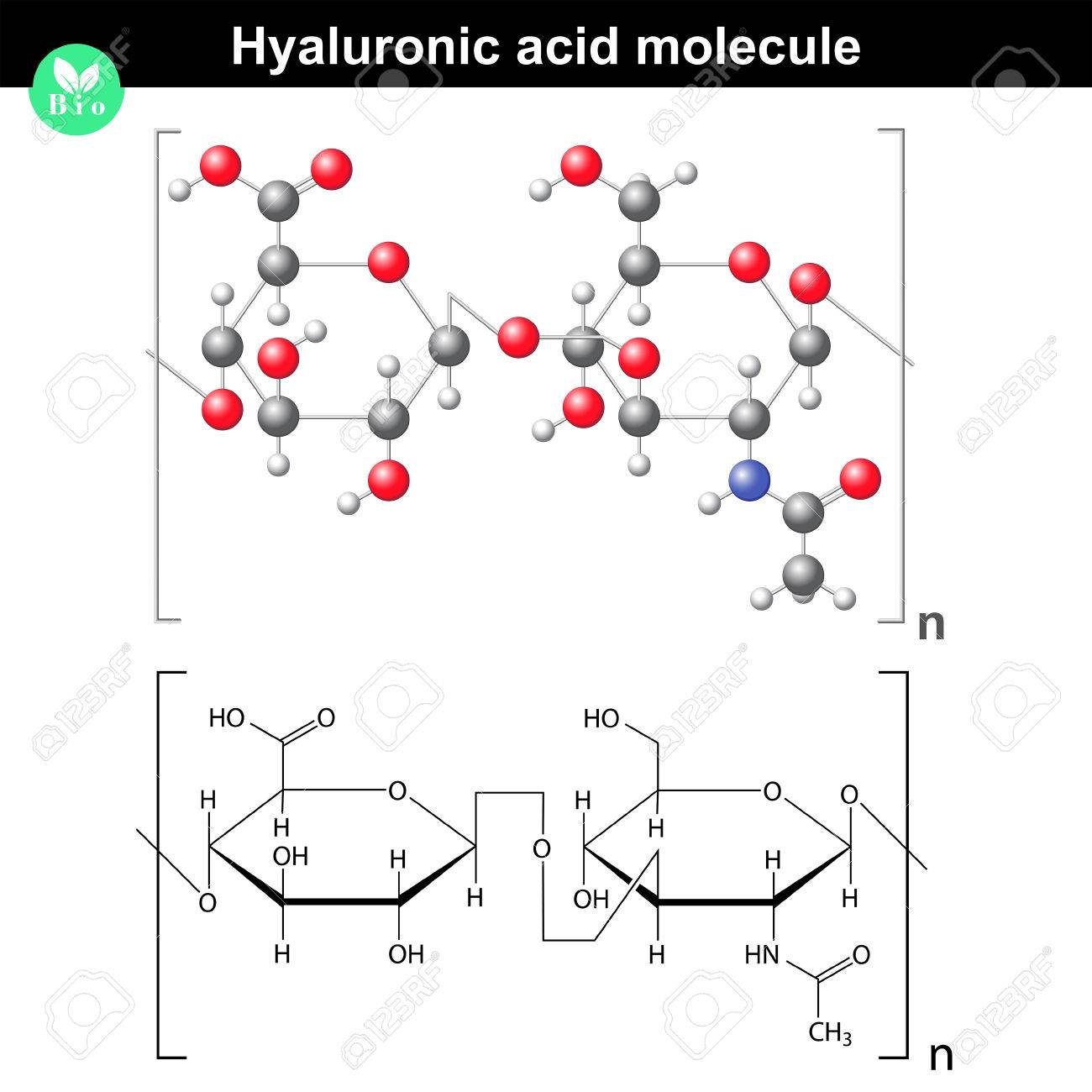 Hyaluronic acid molecule, model and molecular structure, 2d & 3d vector, eps 8 - 47554017