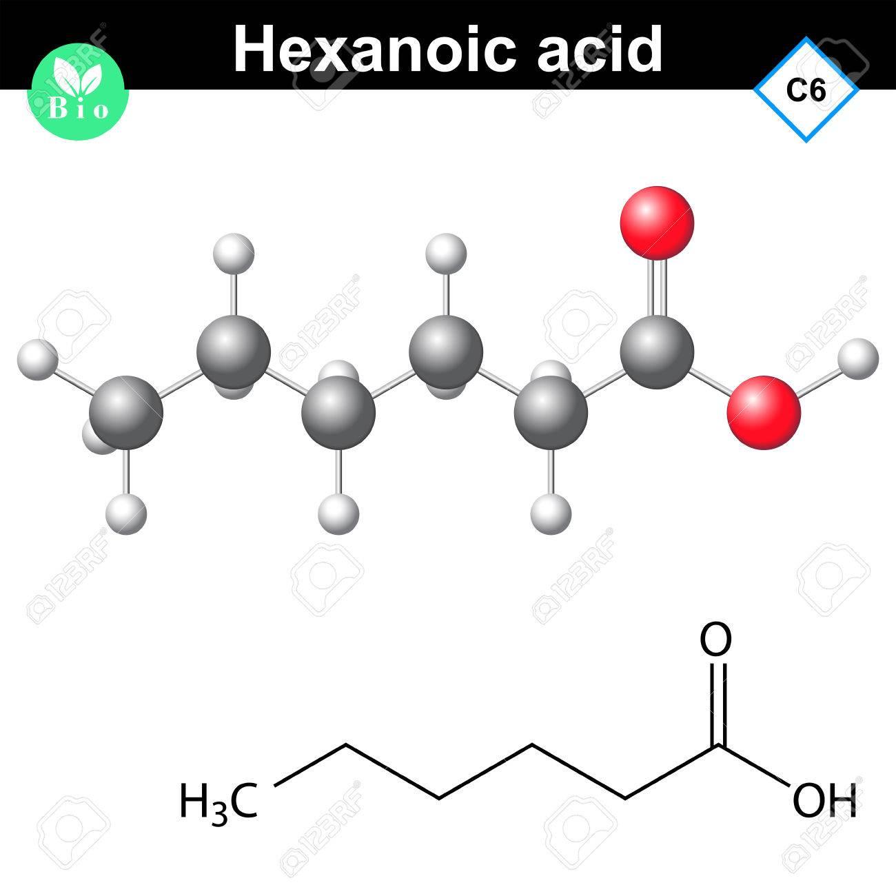 Molécula De ácido Hexanoico Fórmula Química Y La Estructura Molecular Ilustración 2d Y 3d Aislado En Fondo Blanco