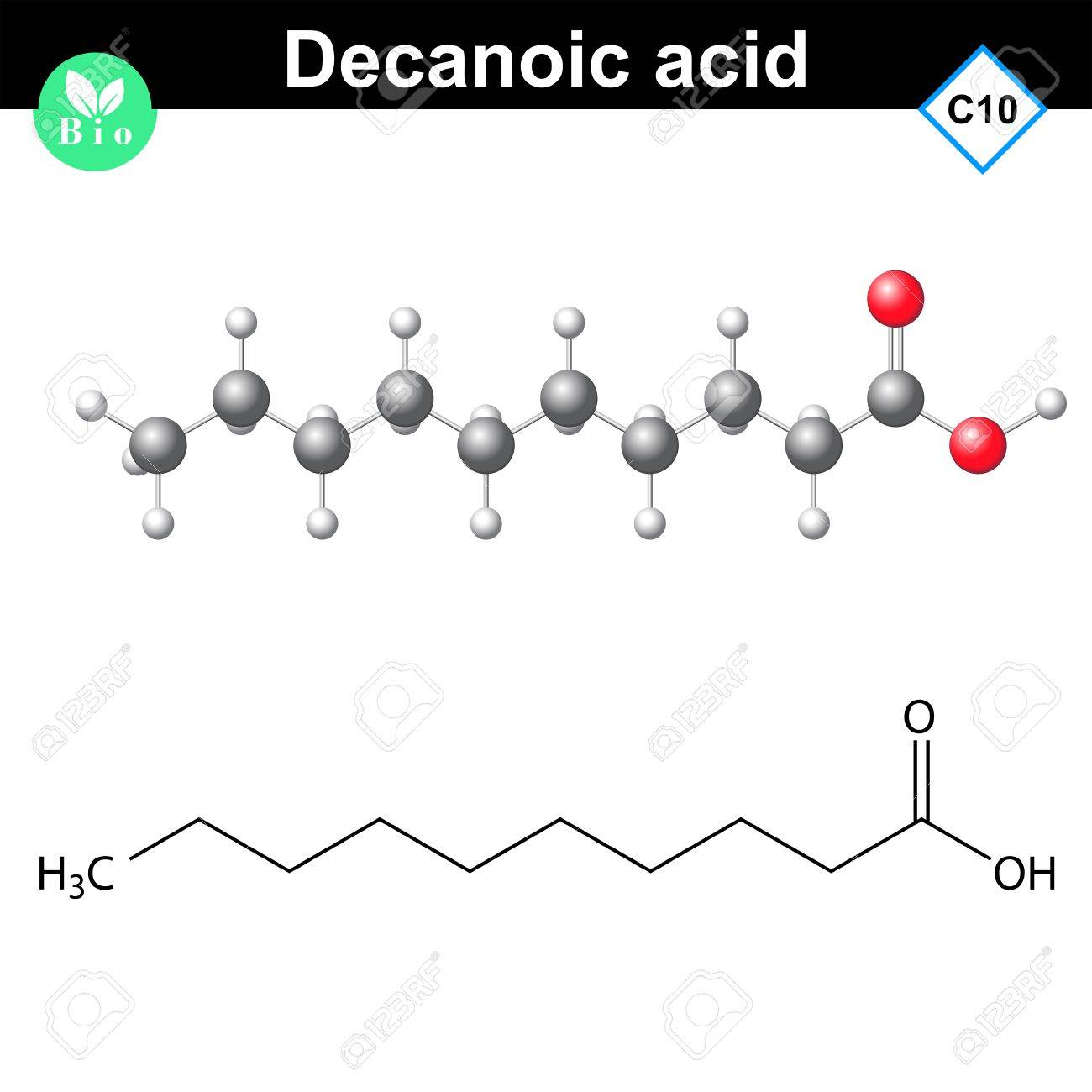 Decanoic acid atomic structure, 2d and 3d vector models, isolated