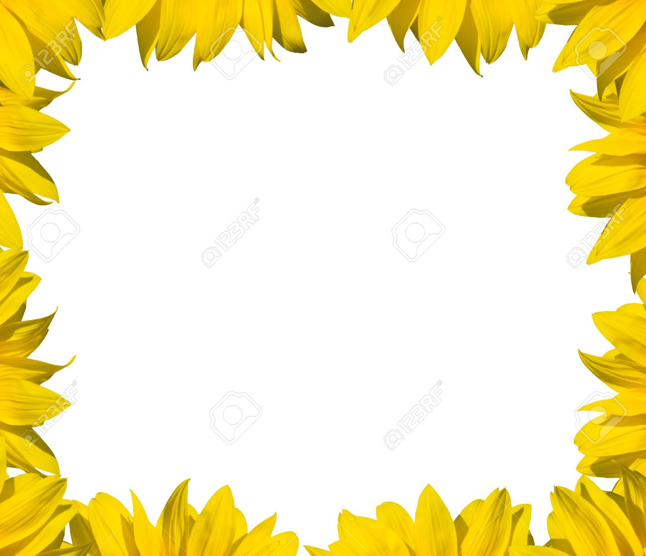 Sunflower Frame For Text Or Image Stock Photo, Picture And Royalty ...