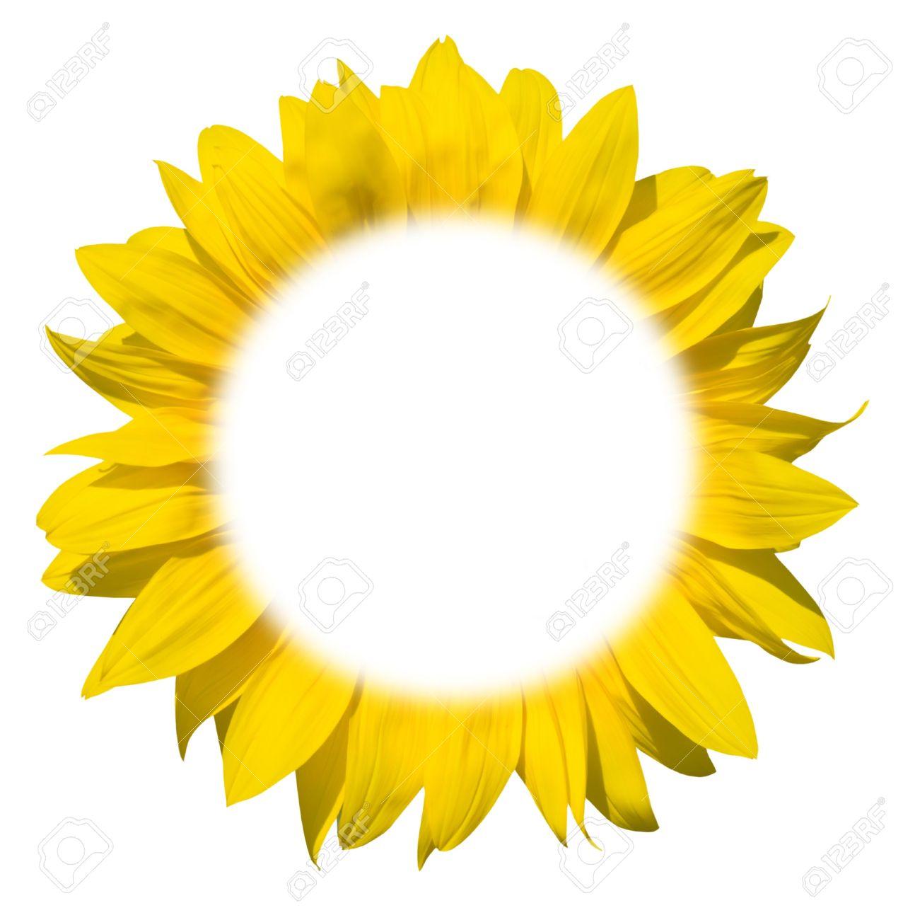 Fantastic Sunflower Picture Frame Festooning - Picture Frame Ideas ...