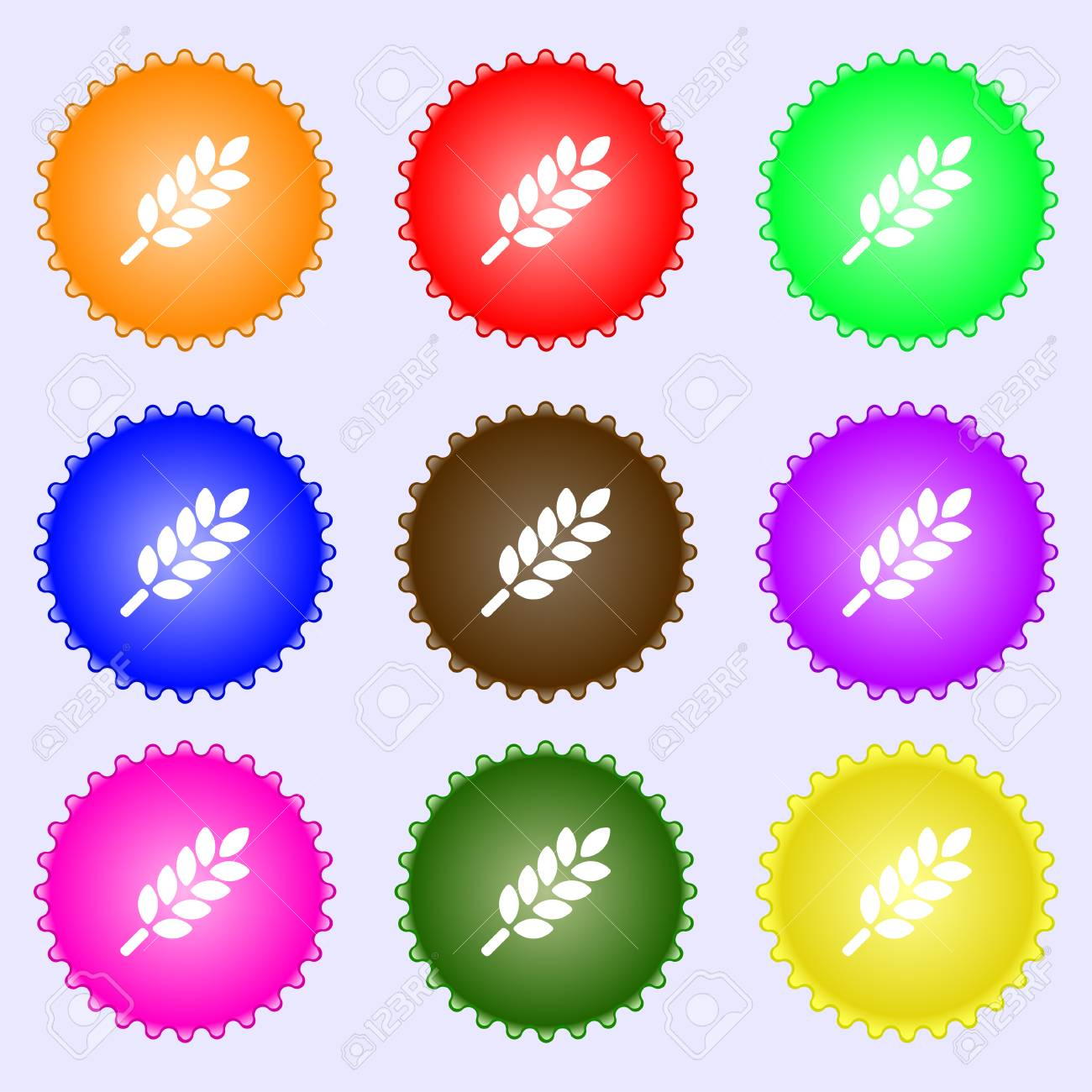 Wheat Ears Icon sign  Big set of colorful, diverse, high-quality