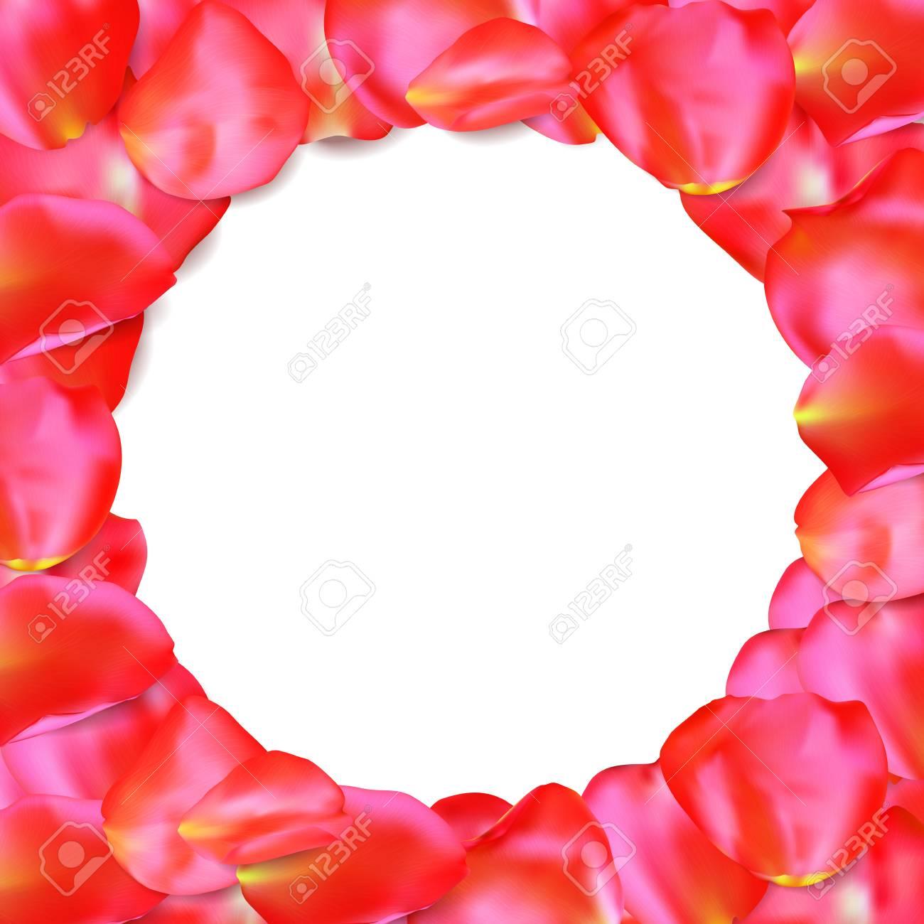Roter Rahmen Der Rosafarbenen Blumenblätter Lokalisiert Auf Weißem ...